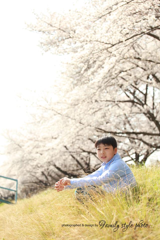 桜と家族写真