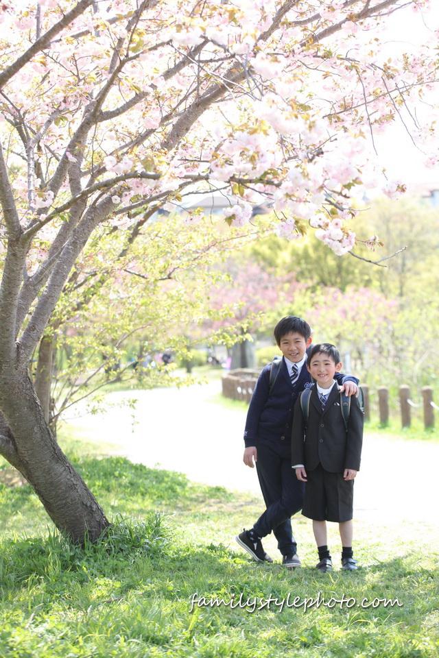 桜の下でランドセルを背負っている兄弟