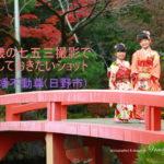 七歳の七五三撮影で残しておきたいショット:高幡不動尊(日野市)