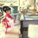 松戸神社で七五三出張撮影|子供と家族写真を得意とするプロカメラマンの松戸神社撮影レポート