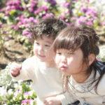 千葉・船橋の家族の写真撮影会はファミリースタイルフォト|屋外で撮る撮影料無料の野外ロケ撮影会って?
